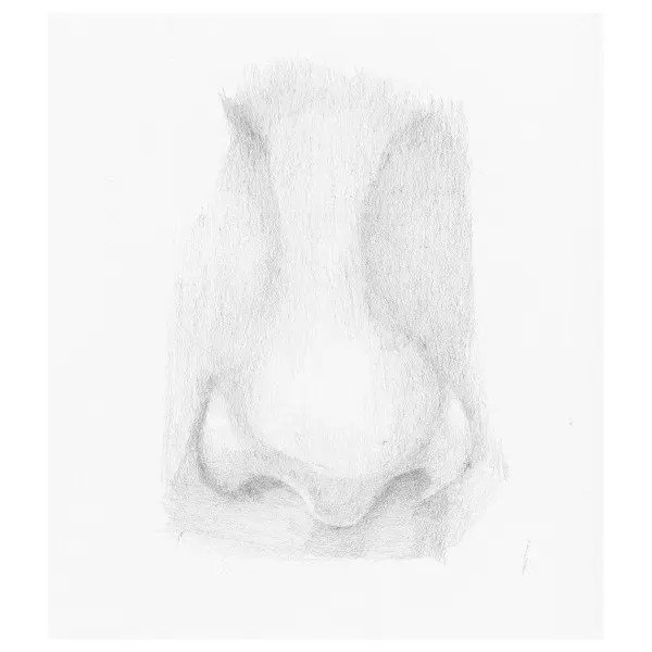 draw a nose step 8