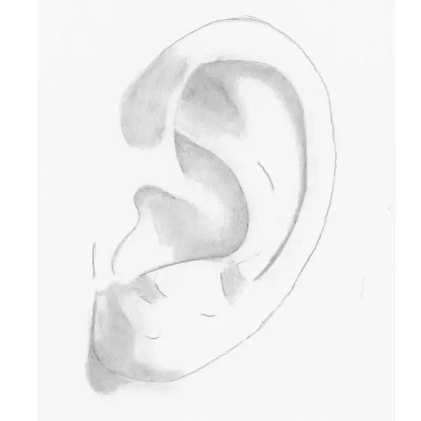 draw an ear step 3
