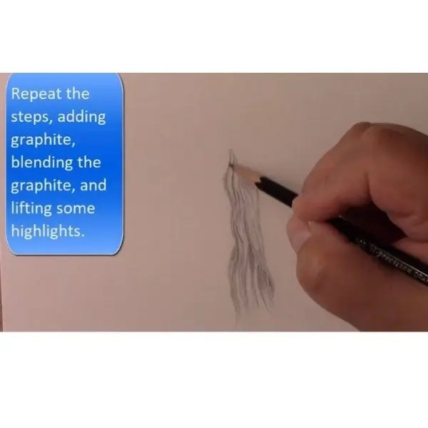 repeat the drawing steps