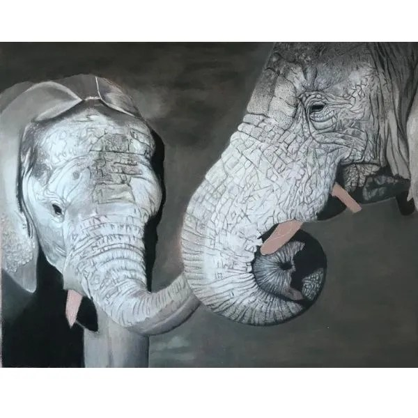 How To Draw An Elephant With Pastels