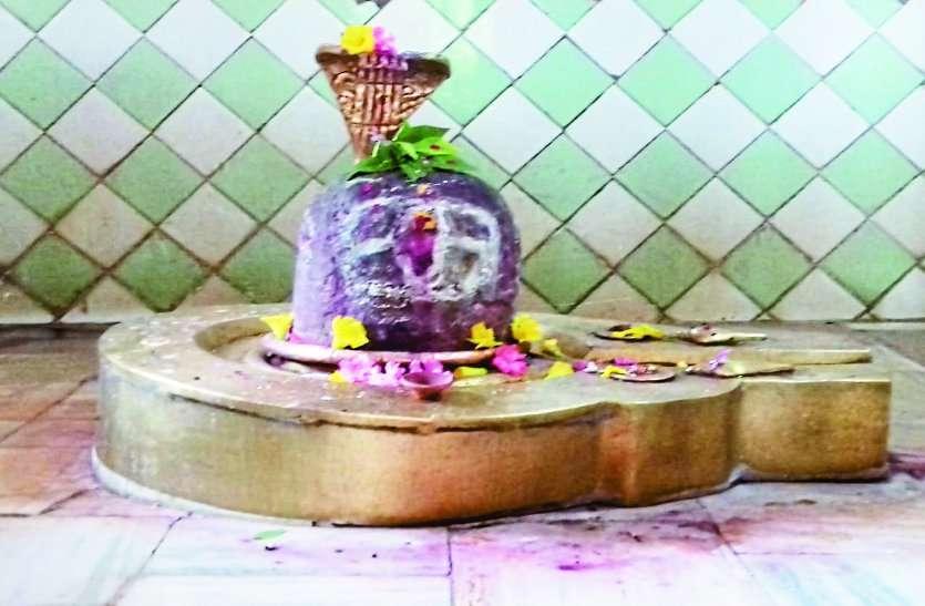 Sawan Shiv Worship