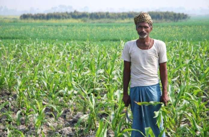 रायपुर : किसानों को हुआ 634 करोड़ का फसल बीमा दावा भुगतान, 15 जुलाई तक फसलों का बीमा