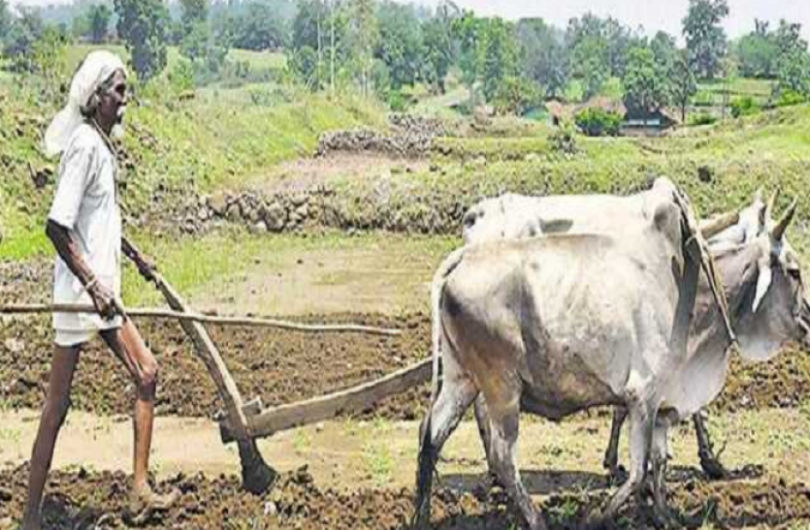 9th installment of PM Kisan will come in August, check your balance