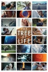 เดอะ ทรี ออฟ ไลฟ์ ต้นไม้แห่งชีวิต The Tree of Life (2011)