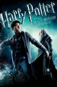 แฮร์รี่ พอตเตอร์กับเจ้าชายเลือดผสม Harry Potter and the Half-Blood Prince (2009)