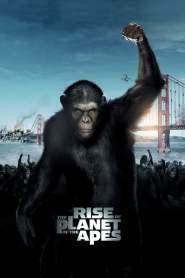 กำเนิดพิภพวานร Rise of the Planet of the Apes (2011)