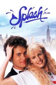 ง.เงือกเลือกรัก Splash (1984)