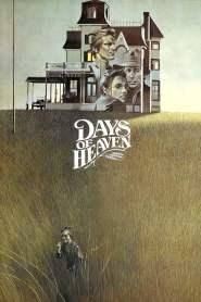 สวรรค์ต้องพราก Days of Heaven (1978)