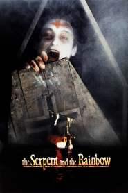 อาถรรพ์ ผงกระตุกวิญญาณ The Serpent and the Rainbow (1988)