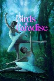 ปักษาสวรรค์ Birds of Paradise (2021)
