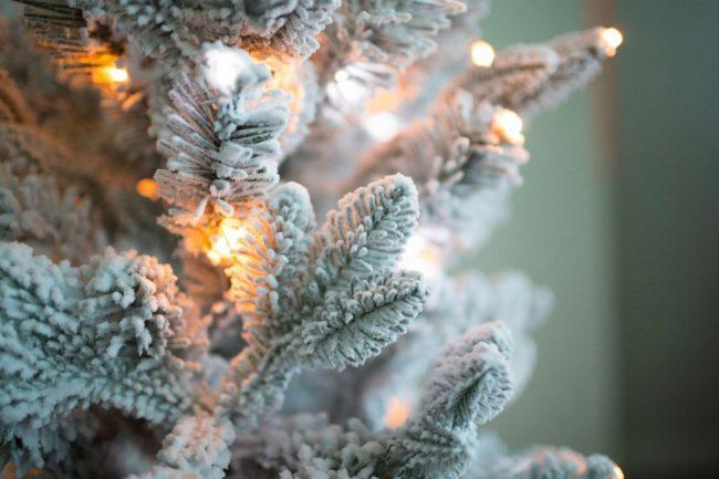 Thí nghiệm và thí nghiệm vào mùa đông và cho năm mới: