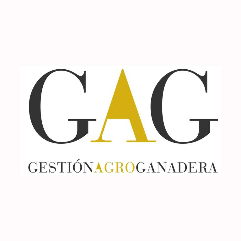 GAGweb13x13