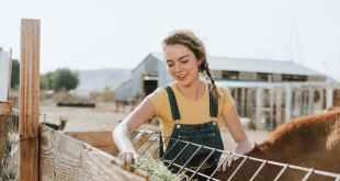 Pomoč za mlade kmete