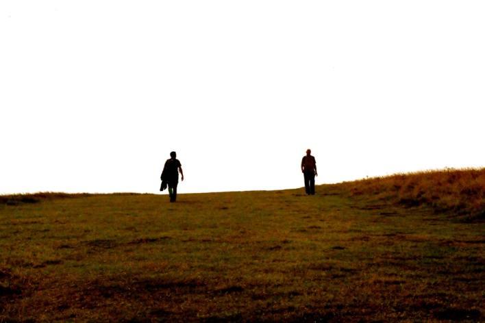 Sprehod po travniku