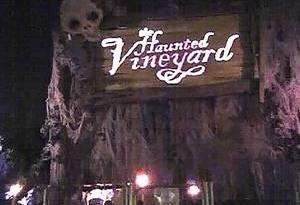 Haunted Vineyard review