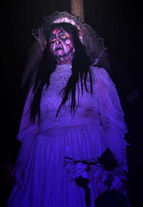 elvira - Halloween Haunt Schedule