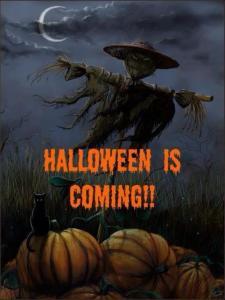 Halloween Is Coming Scarecrow Black Cat Pumpkins