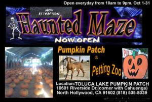 toluca lake pumpkin patch