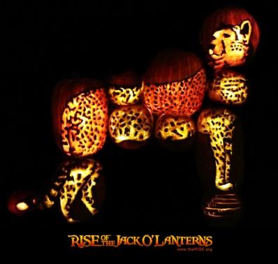 cheetah standing PR LOGO