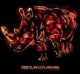 white rhino 2 PR LOGO