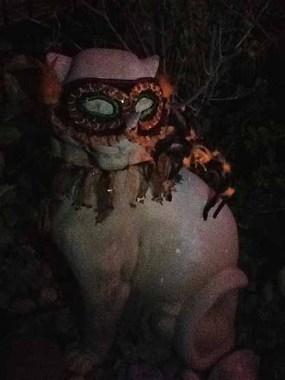 Spider-Lights: Masked Cat