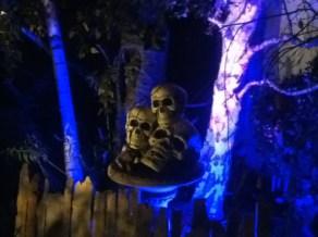 forgotten-hollows-skulls