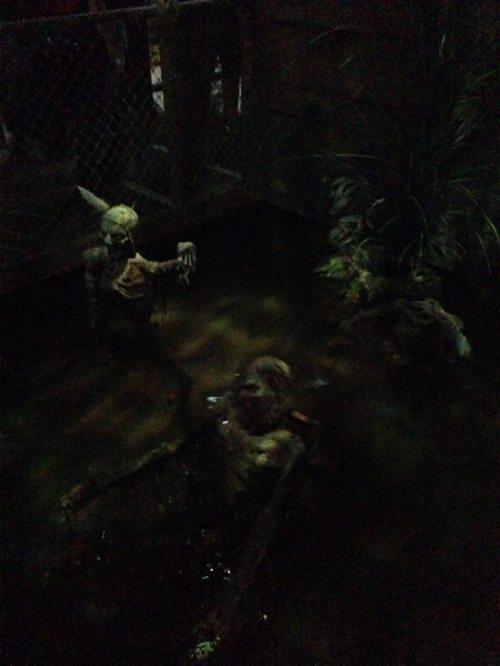 Knotts Scary Farm 2017 Voodoo skeletons
