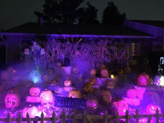 Wicked Pumpkin Hollow