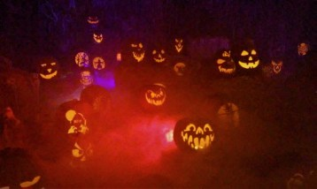 Wicked Pumpkin Hollow 2017 Jack o' Lanterns 3