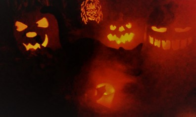 Wicked Pumpkin Hollow 2017 Jack o' Lanterns 5