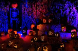 Wicked Pumpkin Hollow 2018 Jack O'Lanterns and Skeleton
