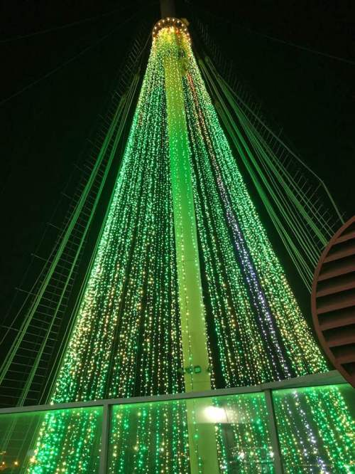 Queen Mary Christmas tree of lights