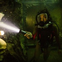 47 Meters Down: Uncaged (film review)