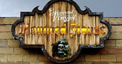 Haunted Vineyard What happened