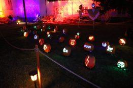 Nights of the Jack Halloween 2019