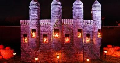 Halloween Jack O'Lanterns pumpkins
