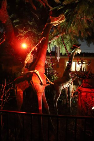 2099 Elsinore Road, Riverside yard haunt 2020