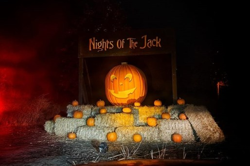 Nights of the Jack