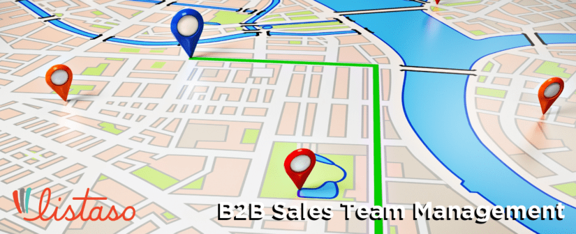B2B Sales Team Management