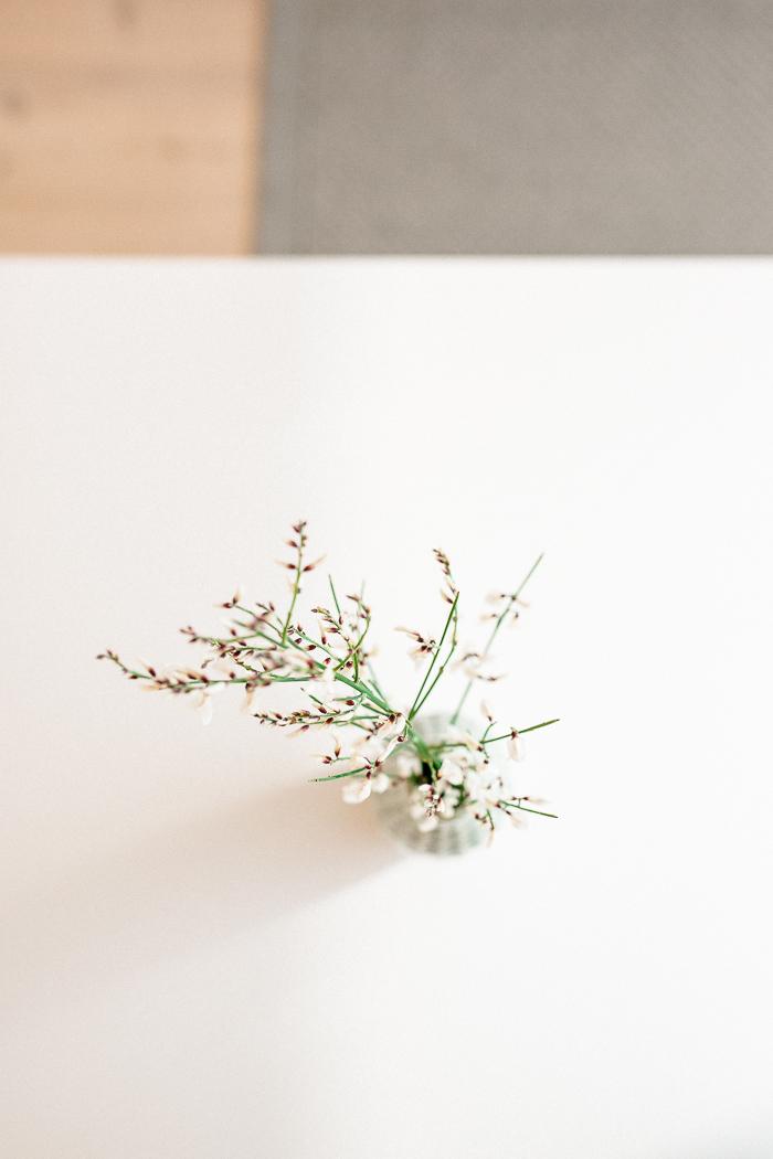stills_hubner_krapesch_skandinavian_spring-003