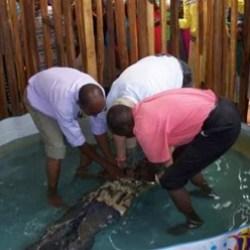 Lare Oibor Baptism