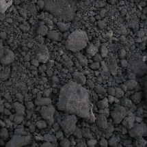 Black Mountain Soil compost05