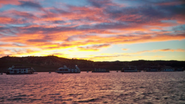 New Melones Fishing Report Is Here!