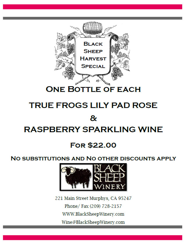 Black Sheep Winery Will Help You Sparkle