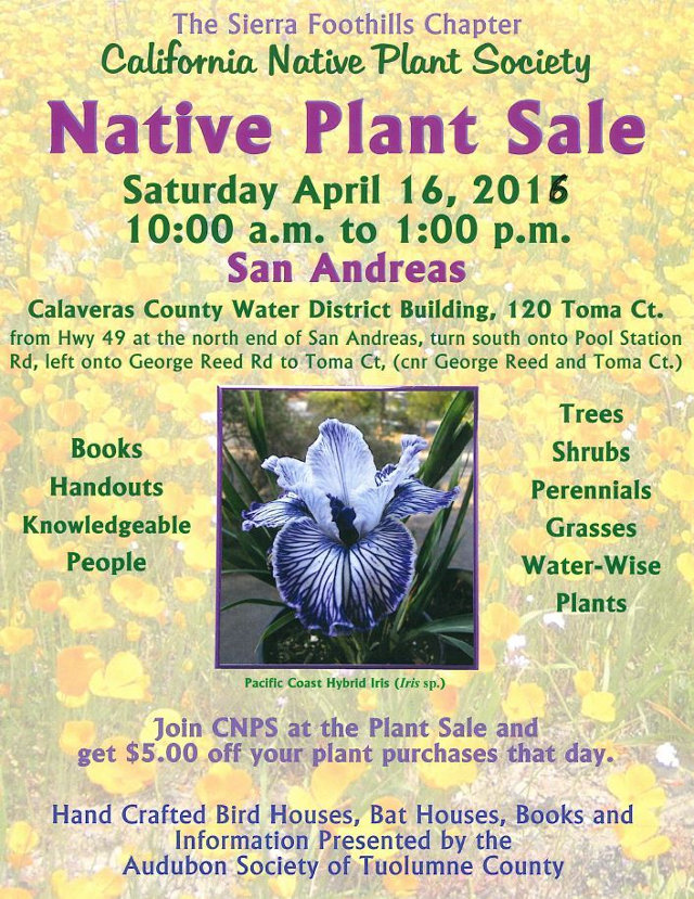 CCWD To Host Native Plant Sale April 16