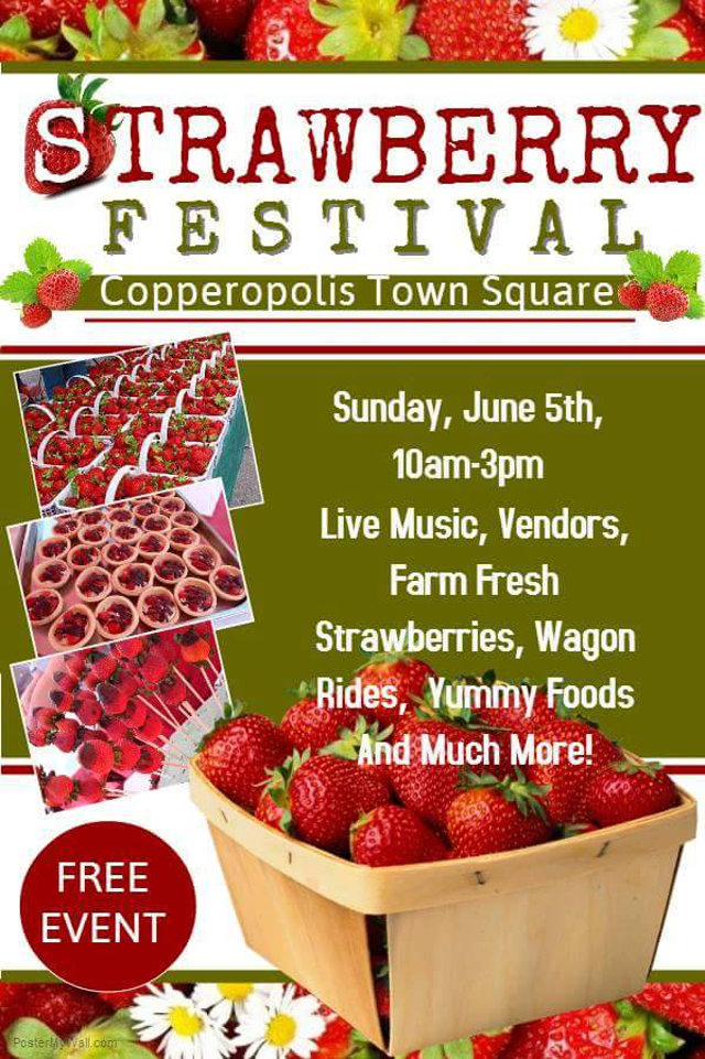 The Strawberry Festival Is Sunday June 5!!
