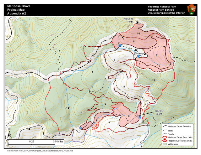 Prescribed Fire For Mariposa Grove In Yosemite National Park