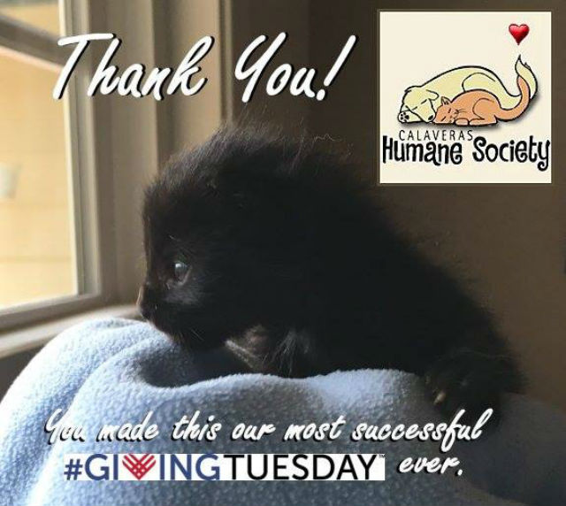 A Special Thanks From The Calaveras Humane Society