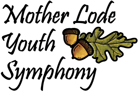 Mother Lode Youth Symphony Winter Concert