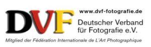 DVF-Logo